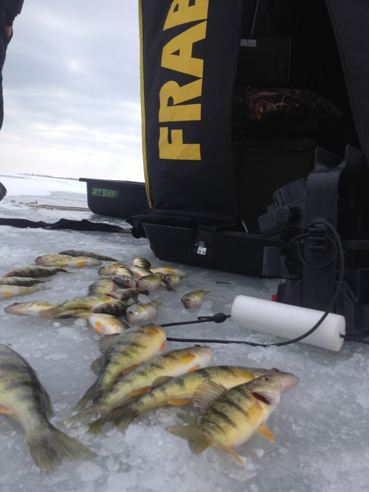 28 Keepers on Lake St Clair