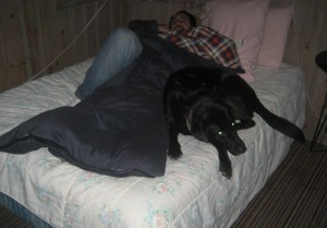 Me and my black lab sleeping on the bed