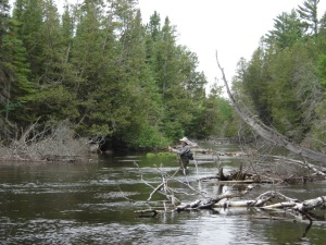man fly fishing in the au sable river