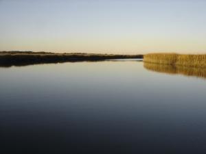 Saltwater River at Slack Tide