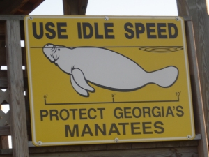 Protect Wild Manatees