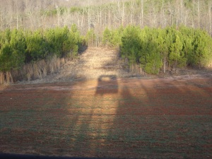 Shadow of a tower blind while deer hunting