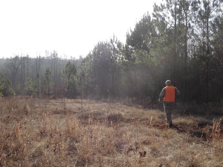 Georgia Deer Hunter in a Meadow