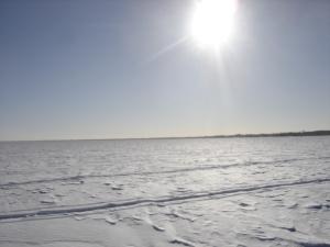 Sun over LSC