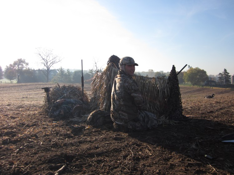 Fence stakes and grass mats, goose blind