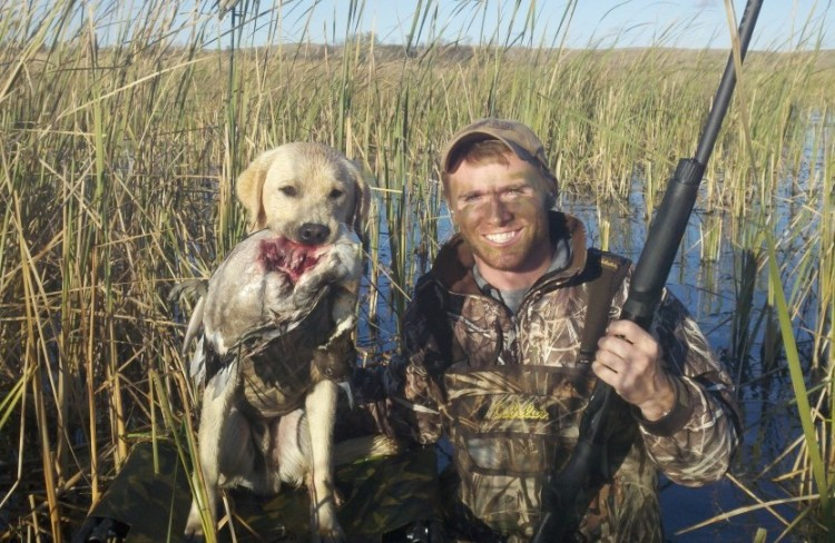 Young hunting dog with a pintail duck