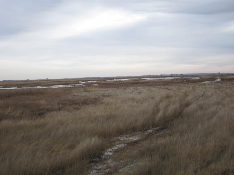 The flooded field in North Dakota
