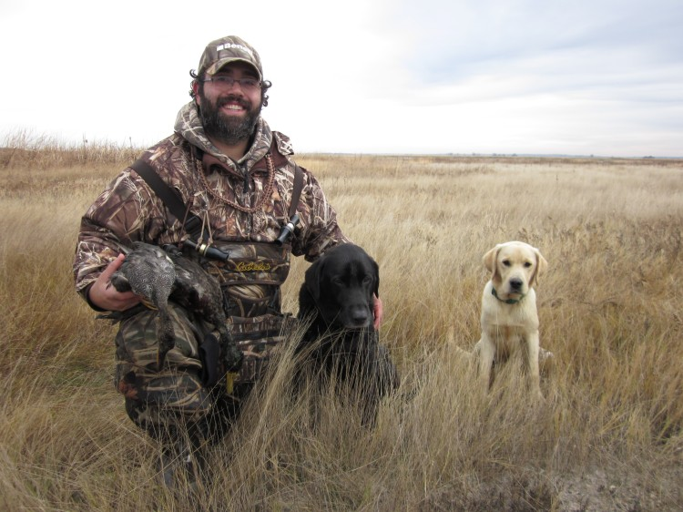 Successful duck dogs