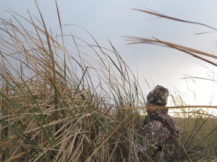 Duck hunter in north dakota