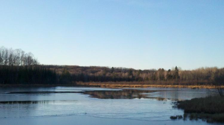 Pond with Skim Ice