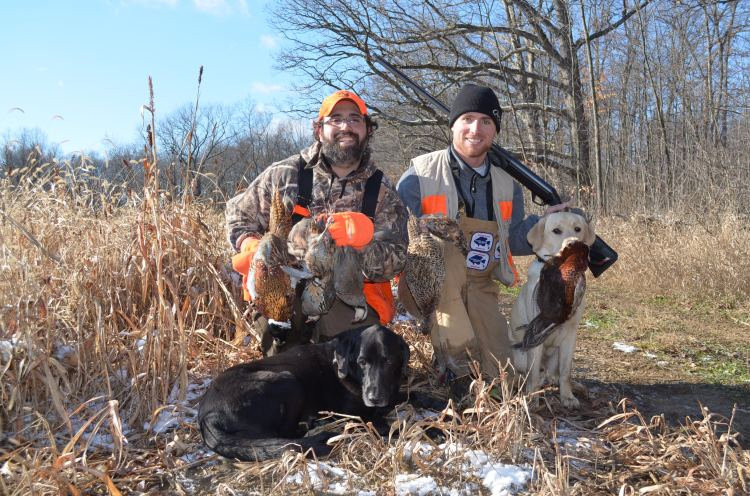 Hunters with dogs and birds