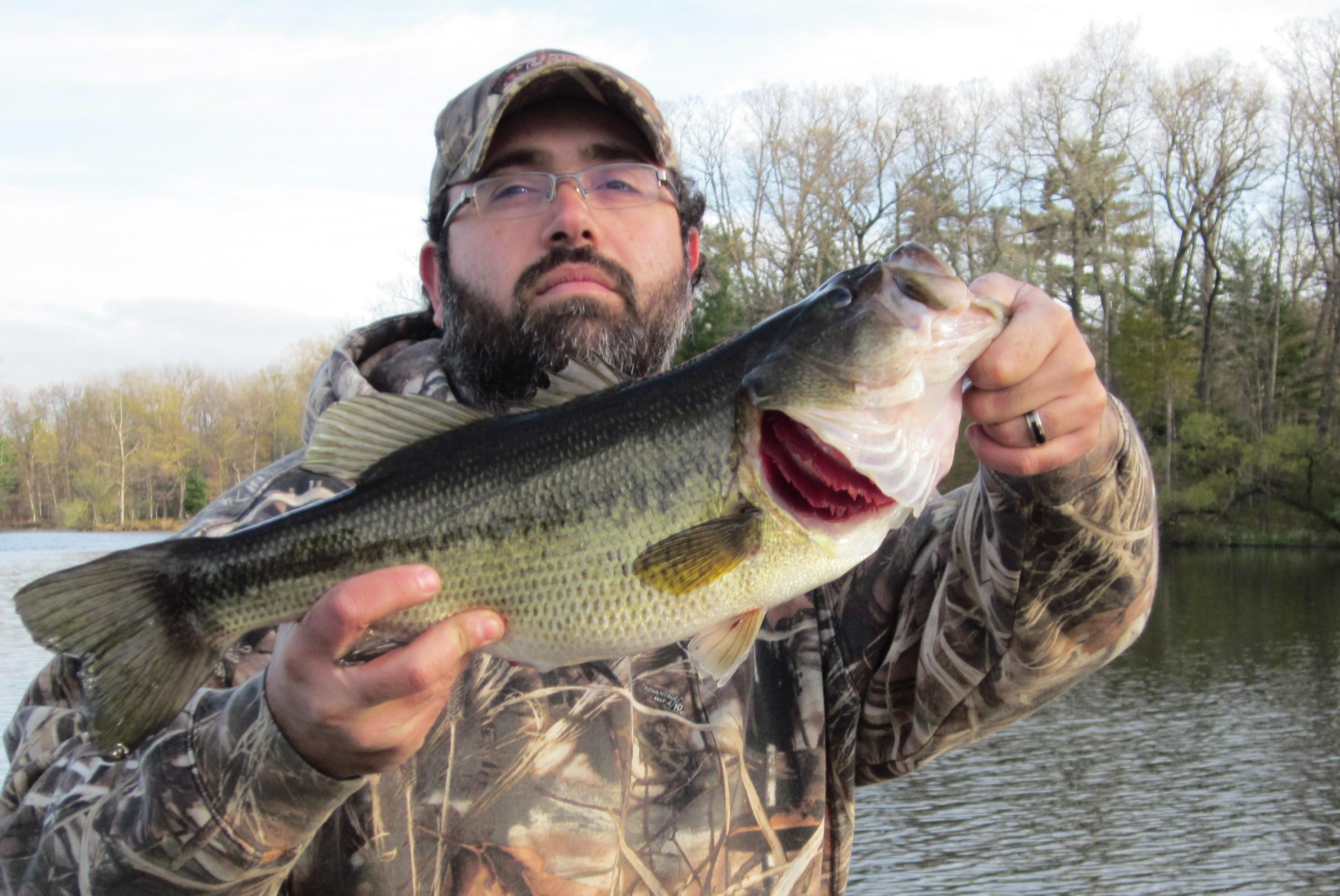 Big bass hunt ducks hook fish for Big bass fishing